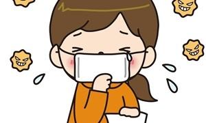 2015年の花粉症の時期は?地域別春編